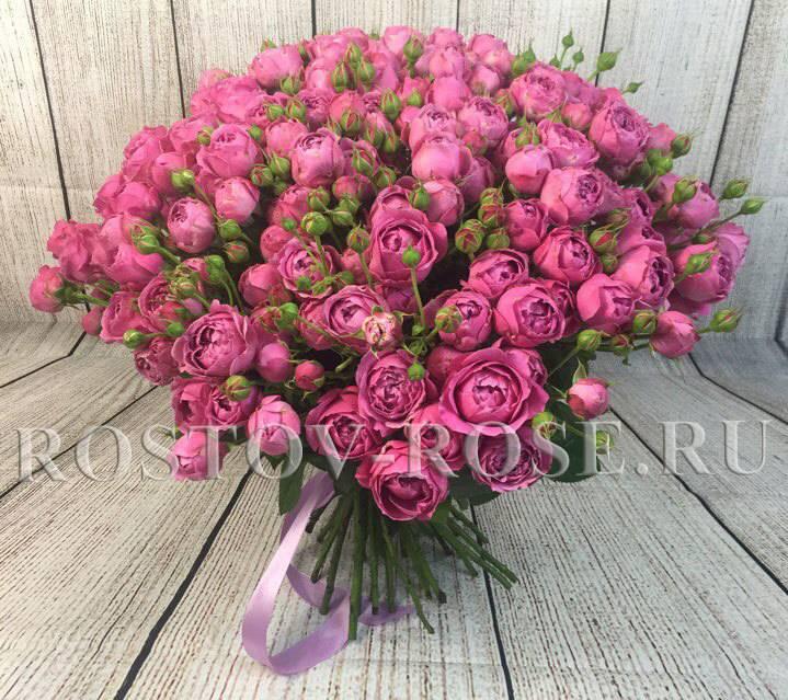 Сорта кустовой розы гийо