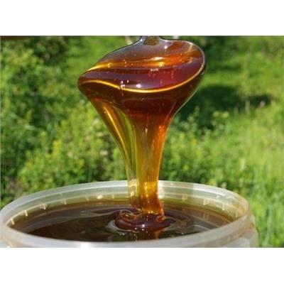 Дягилевый мед при диабете — диабет и всё о нём