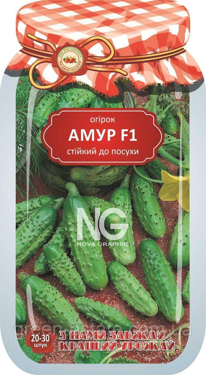 Подробное описание и агротехника сорта огурцов амур f1
