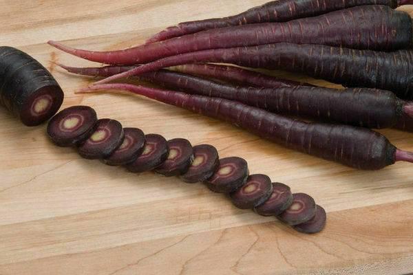 Скорционера – лечебный овощ. скорцонера: выращивание из семян, сорта, уход
