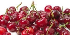 Адаптивность сортов вишни и черешни в условиях брянской области - фгбну внииспк