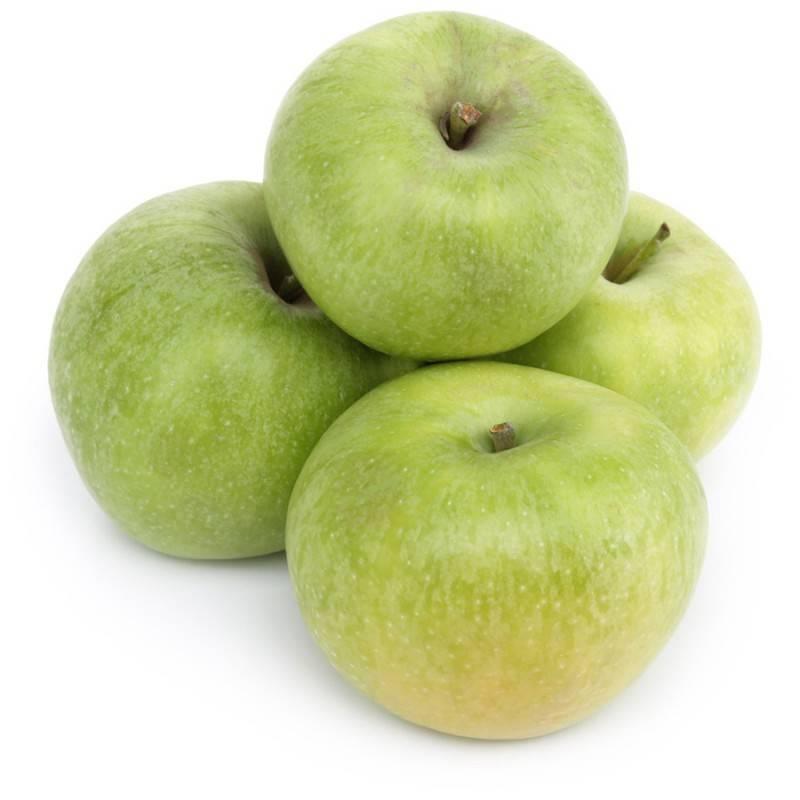 Все о сорте яблони и яблоках симиренко