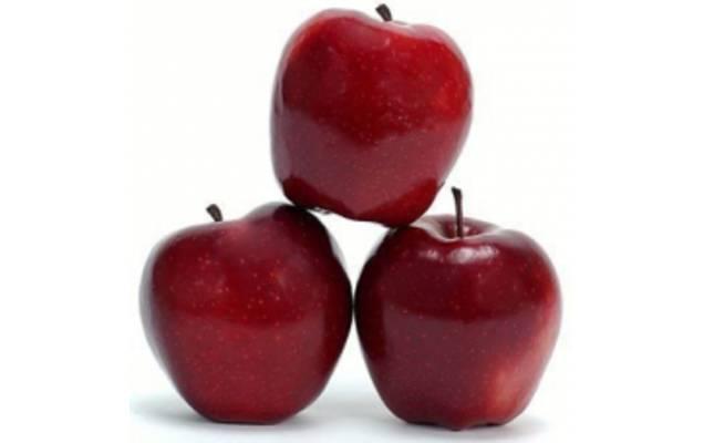 Сорт яблони флорина: ботаническое описание и характеристика, агротехника выращивания