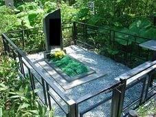 Бурьян на могилке: как навсегда избавиться от травы на кладбище