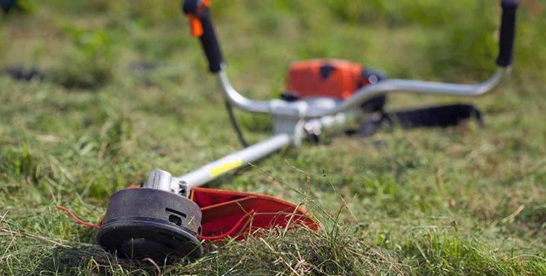 Как выбирают триммеры для дачи: на покос травы, бензиновый, аккумуляторный