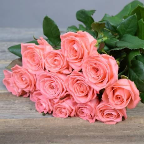 Мифы, легенды и исторические факты о розах