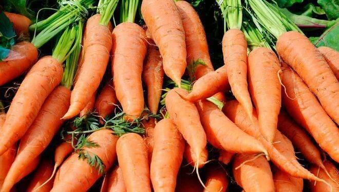 Подкормка моркови в открытом грунте народными средствами, удобрения для моркови