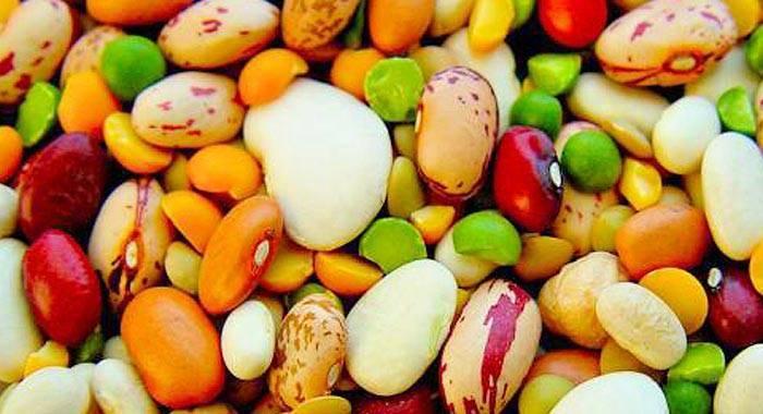 Фасоль и бобы — чем отличаются эти растения?