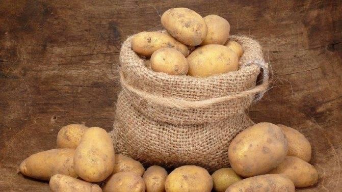 Как правильно сажать картофель: ростками вниз или вверх