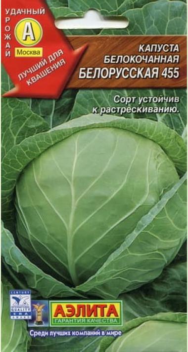 Капуста белорусская 455: особенности, описание, реальные отзывы