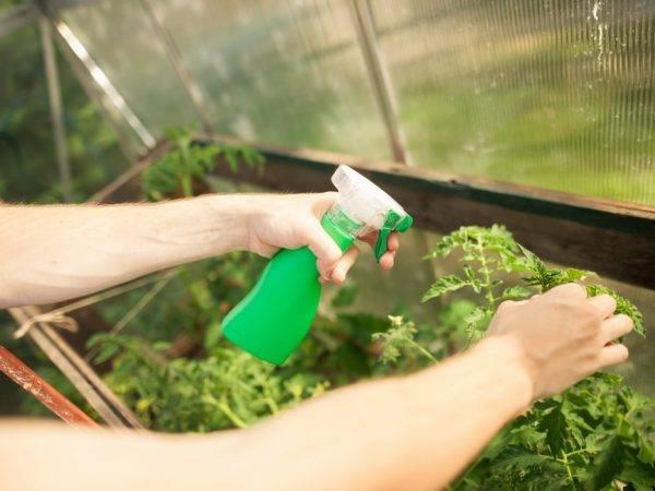 Подготовка кпосевам. обработка семян