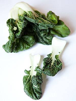 Выращивание капусты пак-чой