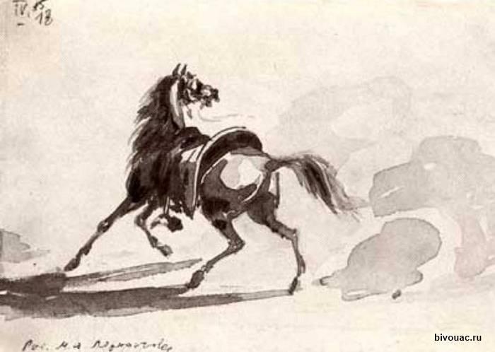 Кабардинская лошадь — википедия с видео // wiki 2