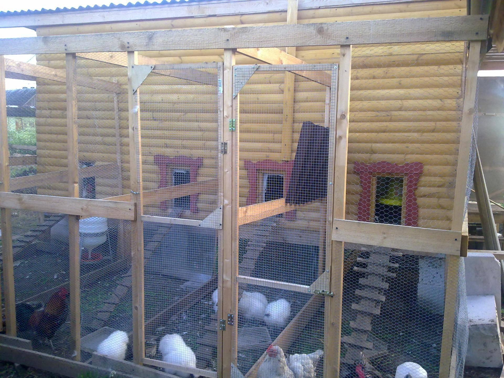 Курятник на 20 кур: проекты, строительство и обустройство