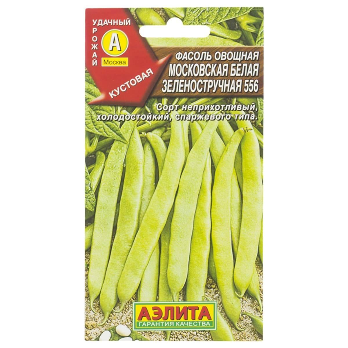 Сорт фасоли московская белая зеленостручная 556. чудеса урожайности