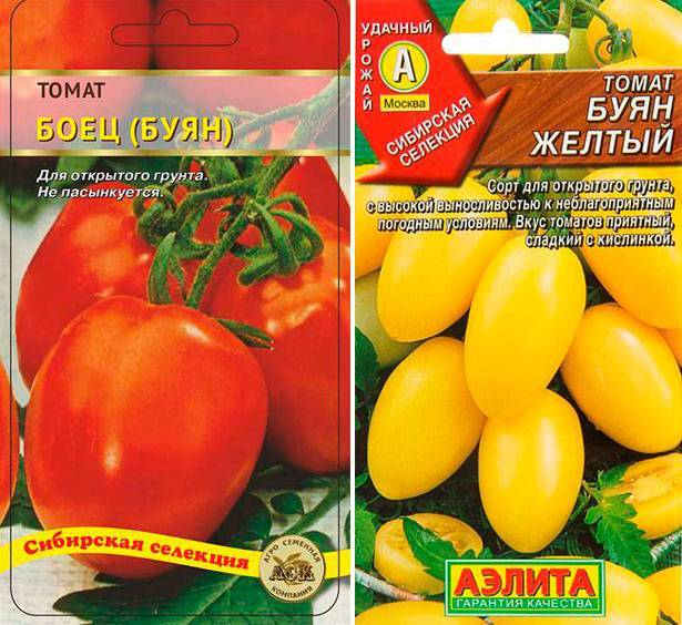 томат любимый праздник отзывы и фото может вызвать трудности