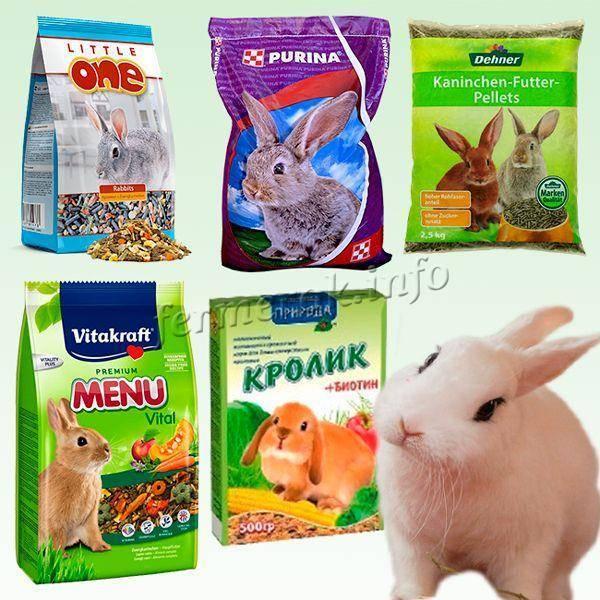 Корм для кроликов своими руками в домашних условиях: рецепты