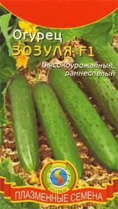 Огурец зозуля f1: хорошо известный тепличный гибрид