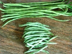 О фасоли овощной, стручковой и спаржевой: есть ли отличия, какая разница