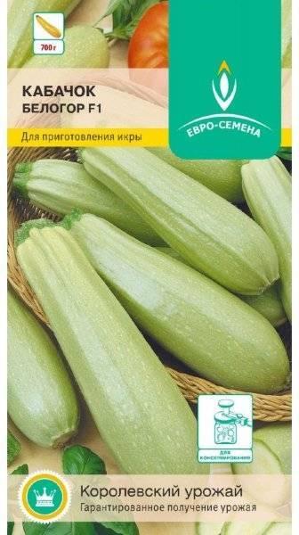 Посадка и уход за кабачками от посева до сбора урожая