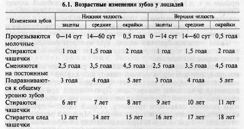 Масти и аллюры лошадей. признаки, позволяющие определять возраст лошадей по зубам