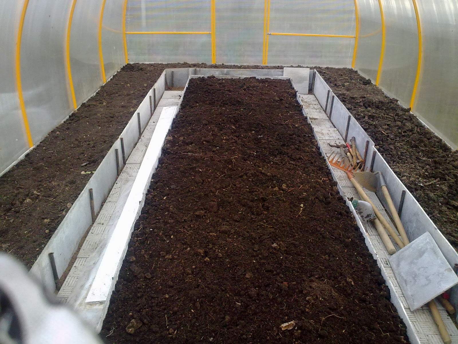 О почве для огурцов в теплице: как подготовить, какую землю любят огурцы