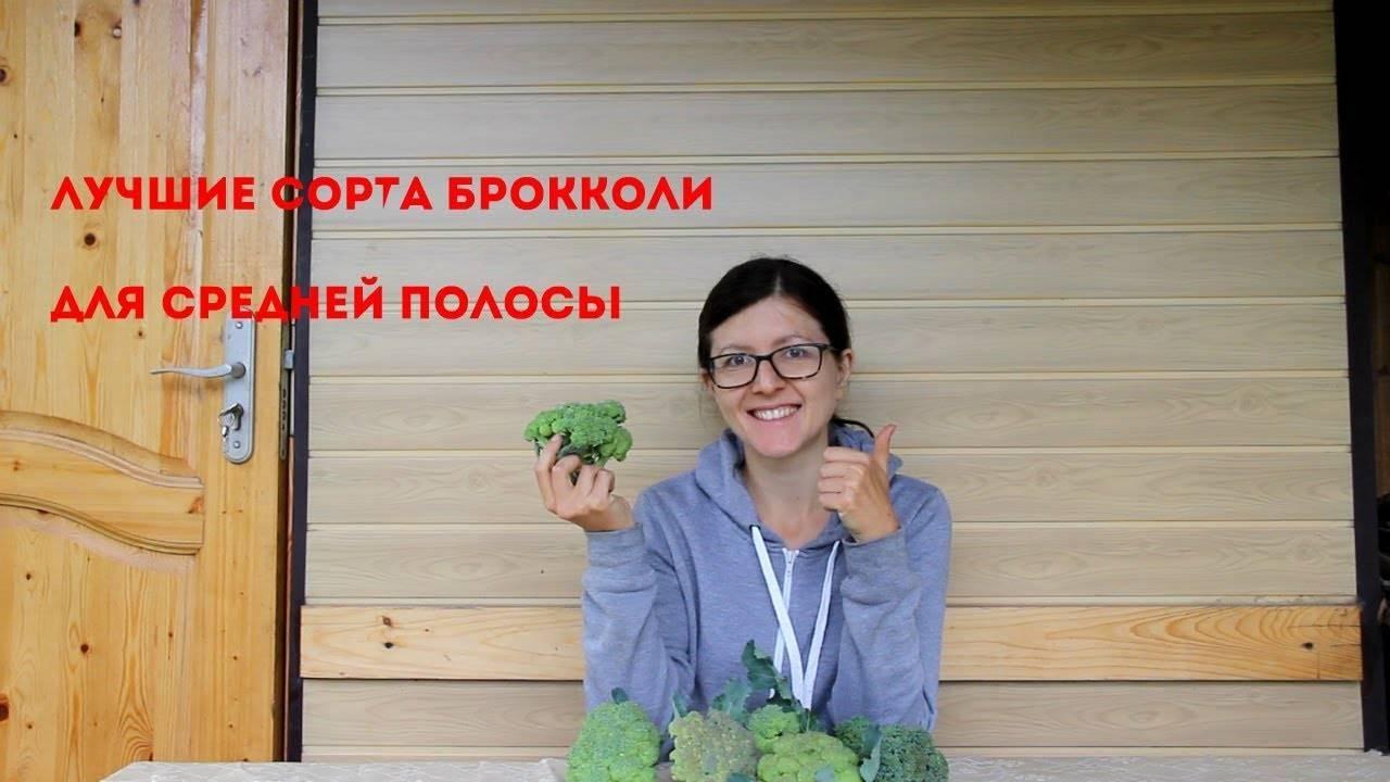 Капуста брокколи: фото, выращивание и уход в открытом грунте, обзор лучших сортов семян, а также рекомендации, где и когда их сажать