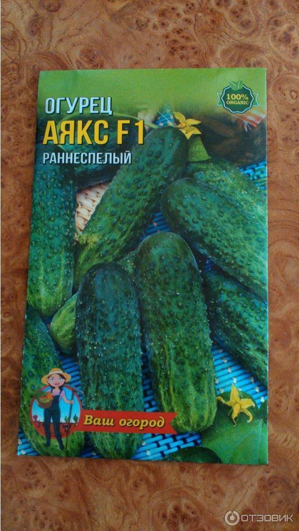 Сорт огурцов аякс f1