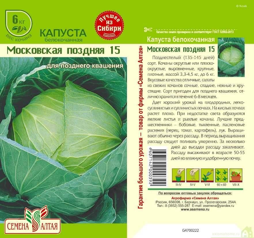 Сорта белокочанной капусты: описание, фото, таблицы