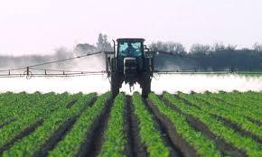 Применение гербицидов от сорняков: инструкция, цена и отзывы