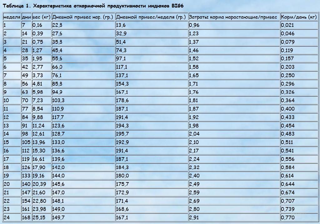 Сколько весит индюк домашний: подробная таблица от птенца до взрослой особи
