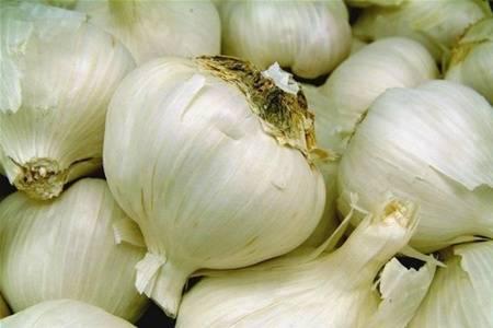 Что такое китайский чеснок и как его выращивать