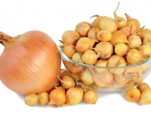 Как и в чем правильно хранить лук-севок до весны?