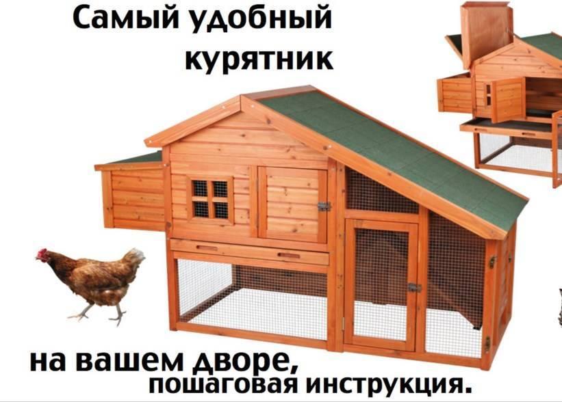 Особенности создания зимнего курятника на 20 кур своими руками