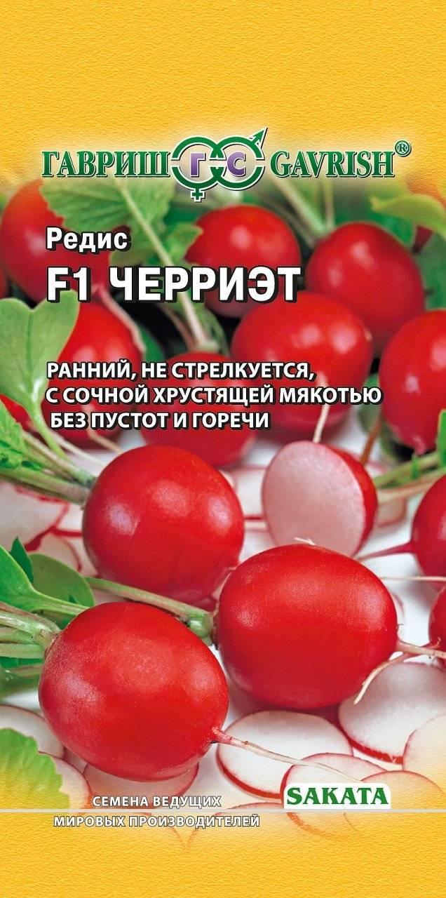 Редис черриэт: описание и особенности сорта