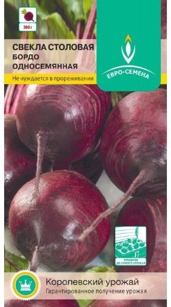 Сочная и сладкая столовая свекла бордо 237: описание с фото, рекомендации по выращиванию