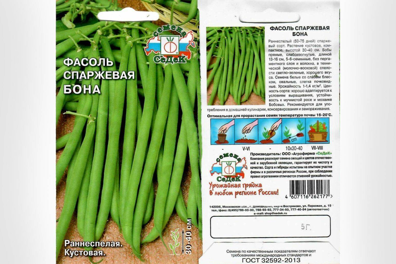 Спаржевая фасоль - сорта, описание, выращивание и уход