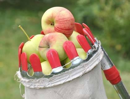 Плодосъемники: плодосборники с заслонкой и телескопической ручкой, другие виды. модели gardena и другие приспособления для сбора фруктов с земли и деревьев
