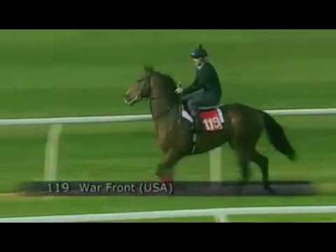 Все о скорости лошади