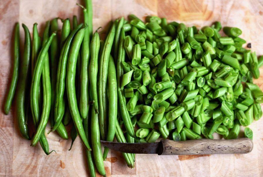 Фасоль: это овощ или нет, виды и описание сортов