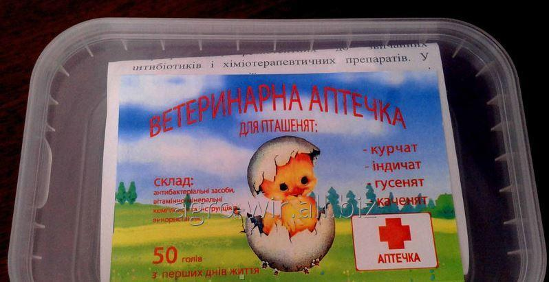 Аптечка для цыплят: список необходимых лекарств