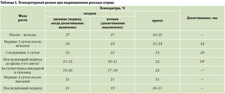 Выращивание огурцов в теплице из поликарбоната, зимой и летом: особенности и технология (фото & видео) +отзывы