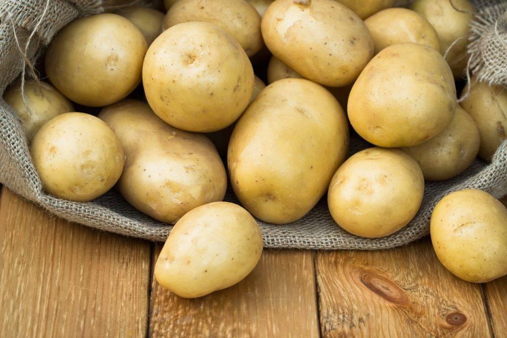 лишь каталог сортов картофеля с фото и описанием холодильник это отличный