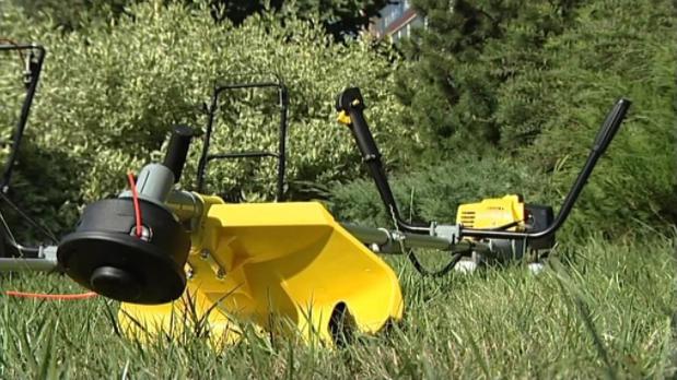 О мотокосах Чемпион: садовая техника Champion для скашивания травы