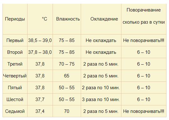 Температура хранения яиц: можно ли держать при комнатных условиях и какой срок, способы поддержания нужных градусов для куриных инкубационных эмбрионов