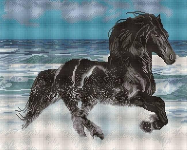 Вороной конь – что значат черные лошади для человека 2020