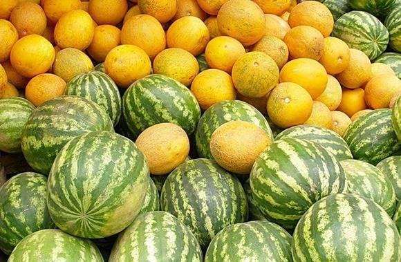 Правильный полив арбузов: как часто надо поливать в открытом грунте