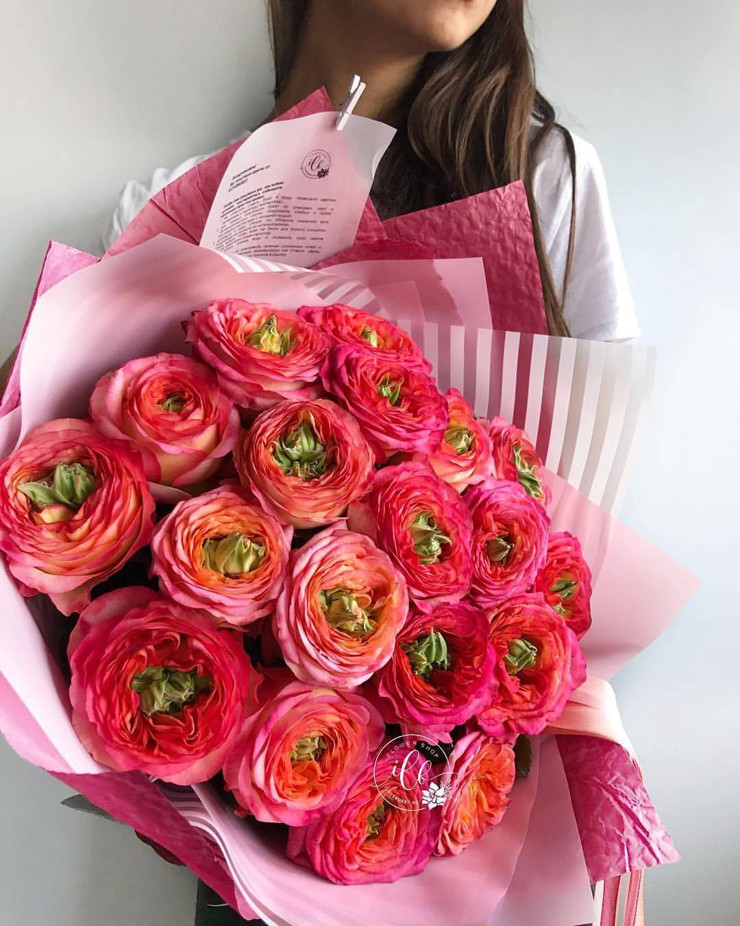 Самый дорогой цветок в мире - кадупул