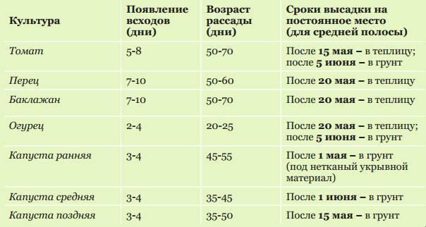 Посадка огурцов на рассаду в 2020 году по лунному календарю: таблица и рекомендации