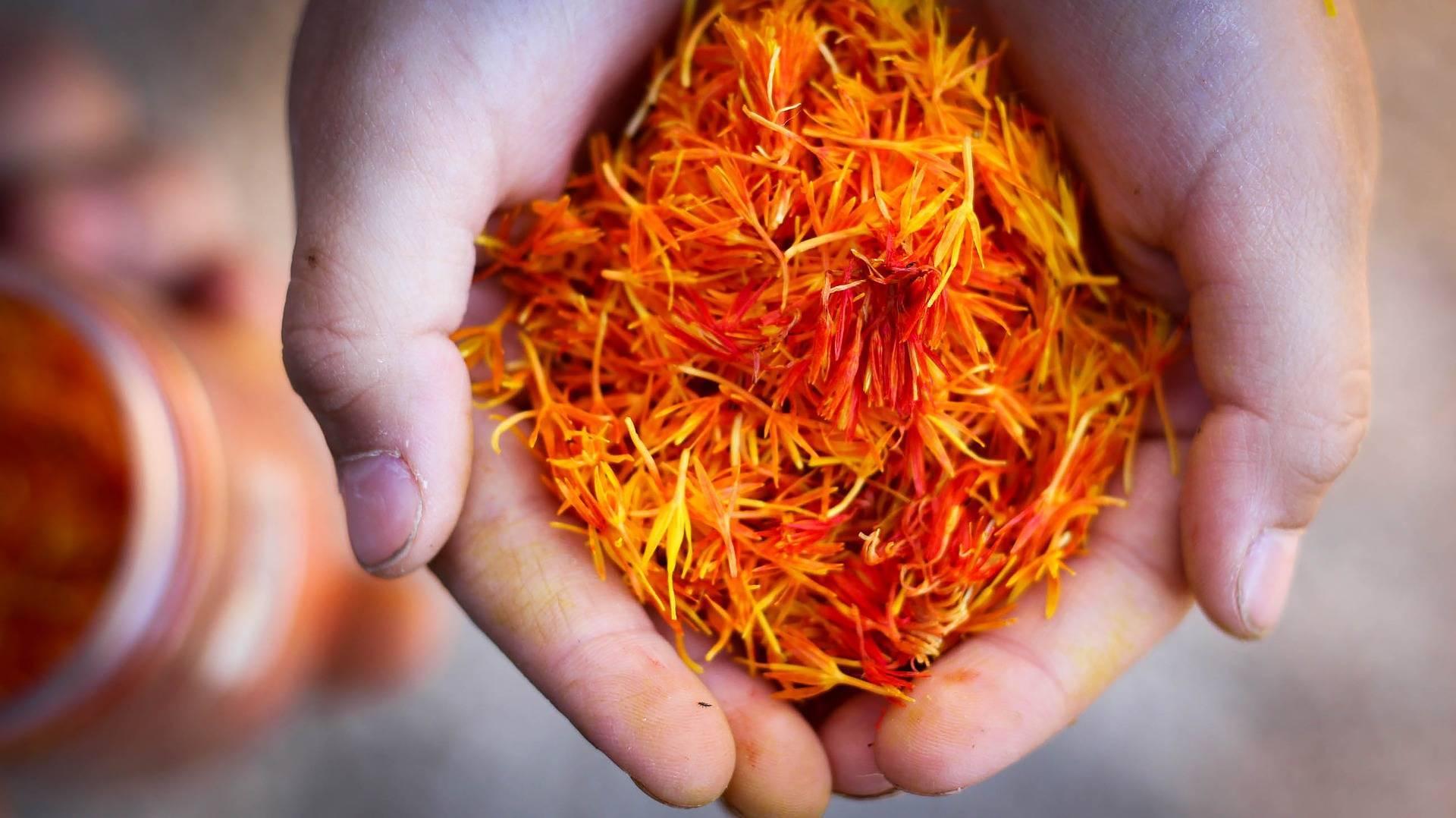 Магические и целебные свойства шафрана: польза и вред, правила выбора и хранения эксклюзивной специи